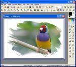 PhotoFiltre X 10.3.1 - Download 10.3.1